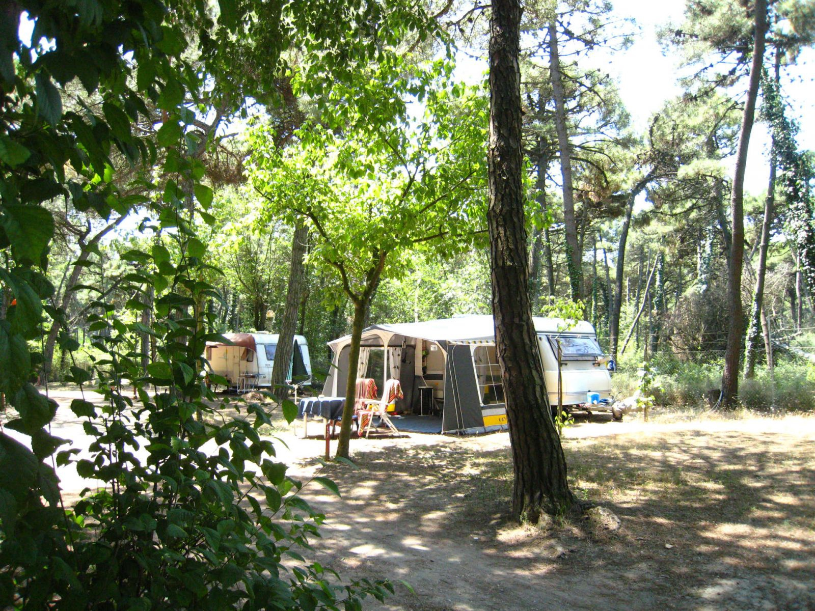 Green Mission Piomboni Camping Village Marina di Ravenna